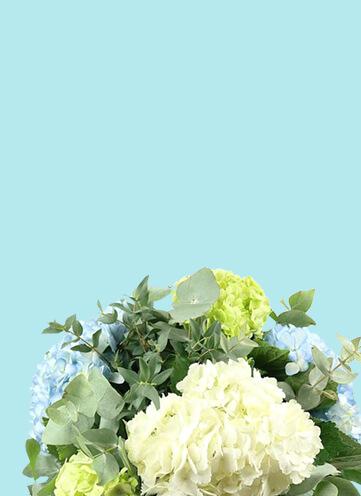 Same day Flowers Beddington